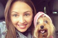 6 причин жалеть, что вы не собачка жены белорусского футболиста