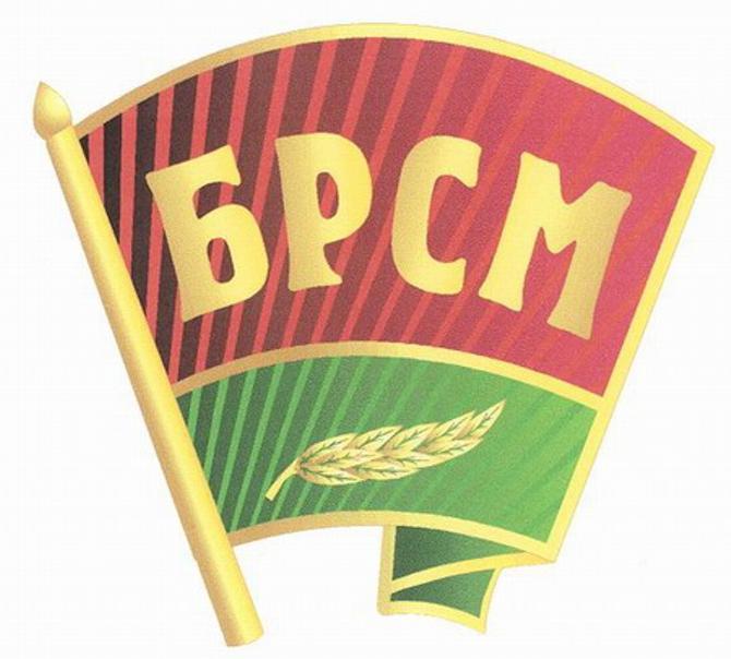Спортсмены затрудняются сделать вывод о 10-летней работе БРСМ.