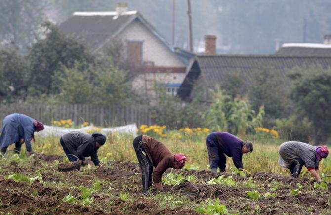 Беларусь для португальцев ассоциируется с картошкой. А теперь еще и с БАТЭ.
