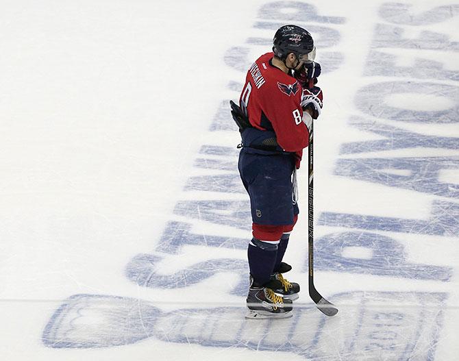 Овечкаут. Все, что нужно знать о плей-офф НХЛ 11-13 мая